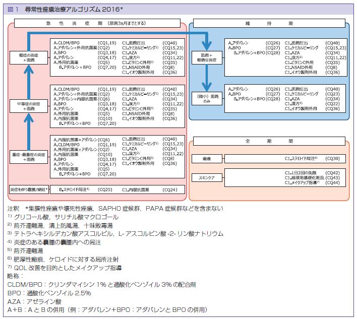 日本ニキビガイドライン
